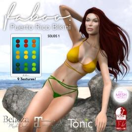 puerto rico solids1